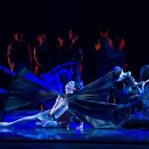 MKE_Ballet_-_Mark_Frohna_300x300Web.jpg